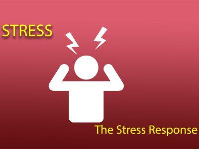 Stress – The Stress Response