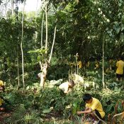5th June – World Environment Day