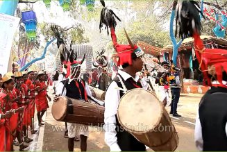 Indian Art and Craft – Gaur Maria Dance