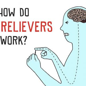 How do Pain Relievers work? – Basics