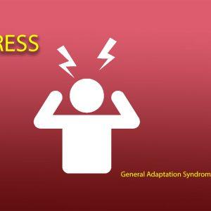 Stress – General Adaptation Syndrome